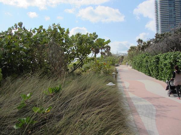 Miami Beach_promenada 3