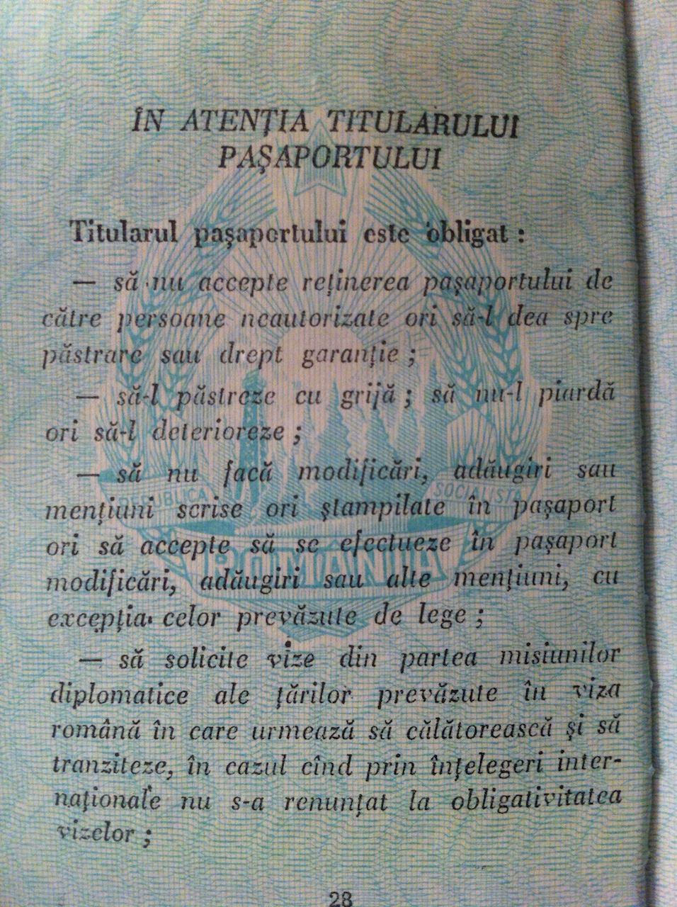 pasaport 8