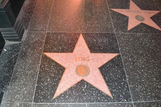 LA Hollywood Walk of Fame 1
