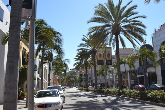 Los Angeles_Rodeo Drive 10