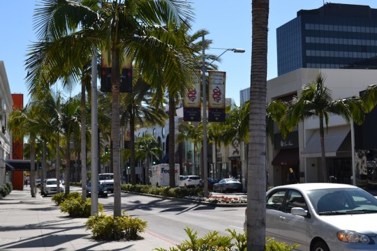 Los Angeles_Rodeo Drive 12