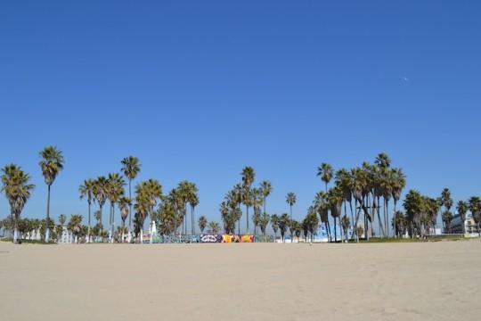 Los Angeles_Venice Beach 11