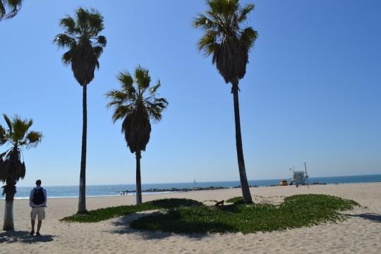Los Angeles_Venice Beach 9