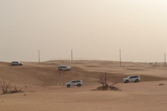 Dubai_Desert safari 14