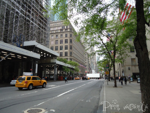 NYCmai2013_16