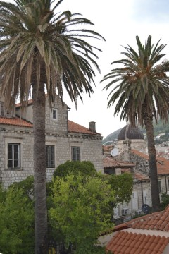 Croatia_Dubrovnik 21
