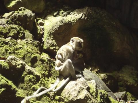 Kuala Lumpur_Batu Caves 12