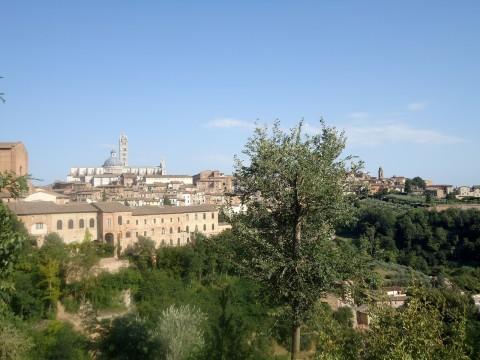 Toscana 10
