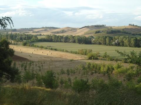Toscana 21
