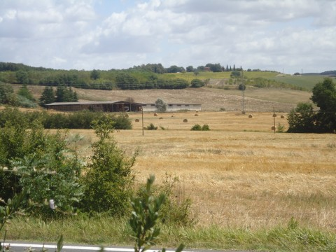 Toscana 23