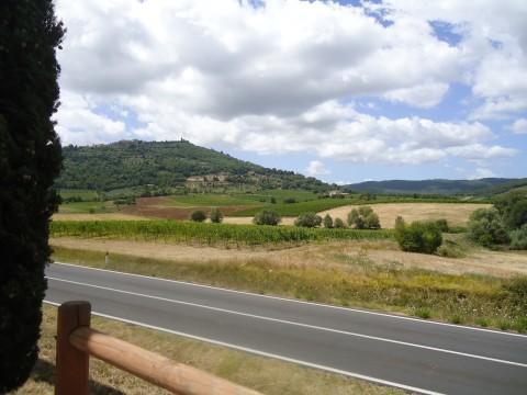 Toscana 25