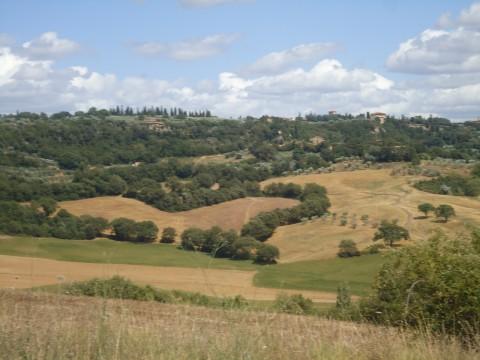 Toscana 39