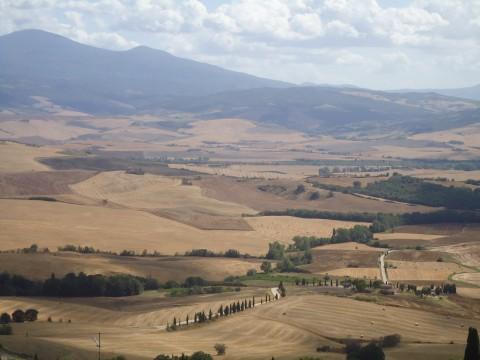 Toscana 44