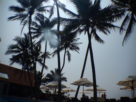 Sri Lanka 12