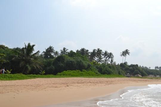 Sri Lanka_Bentota 12