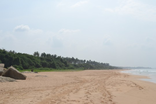 Sri Lanka_Bentota 23