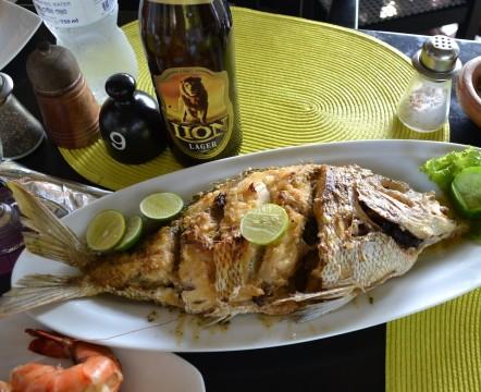 SL_Amal_Coral fish 2