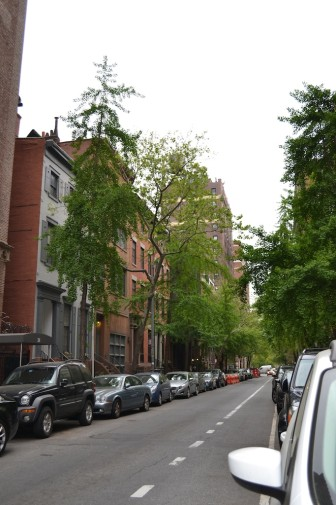 New York_scari 10