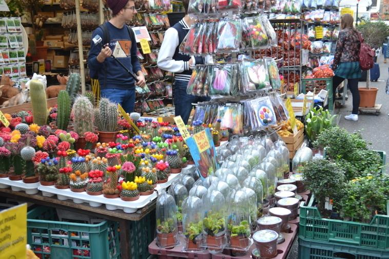 Amsterdam_Piata de flori 2