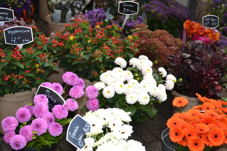 Amsterdam_Piata de flori 4