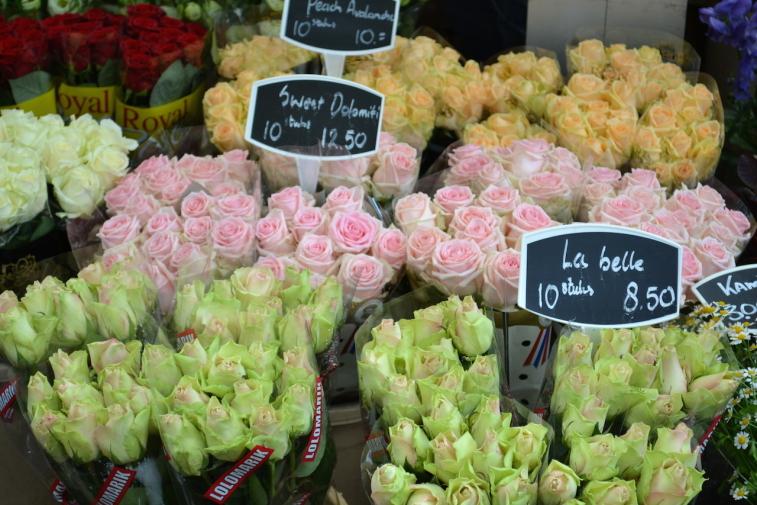 Amsterdam_Piata de flori 6