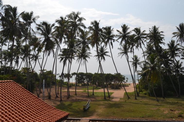 Sri Lanka 13_1