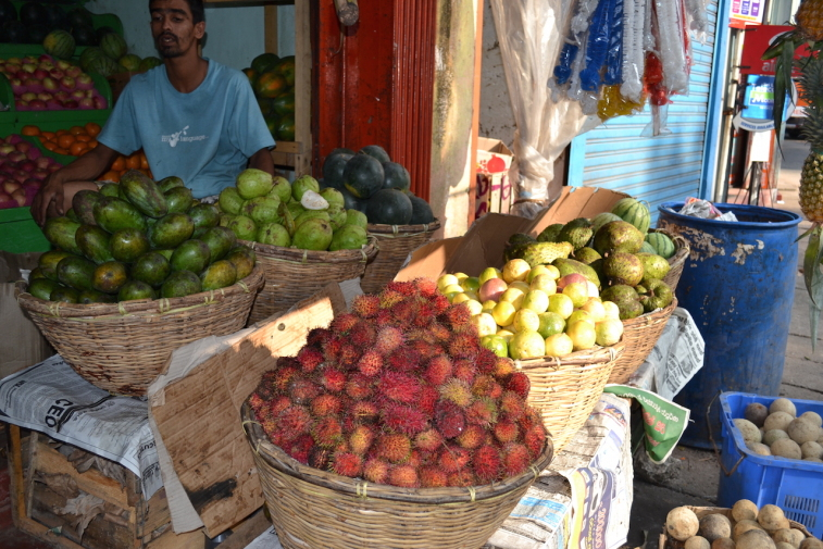 Sri Lanka 13_17