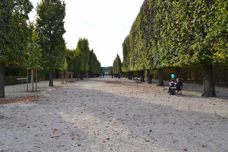 Viena_Schonbrunn 5