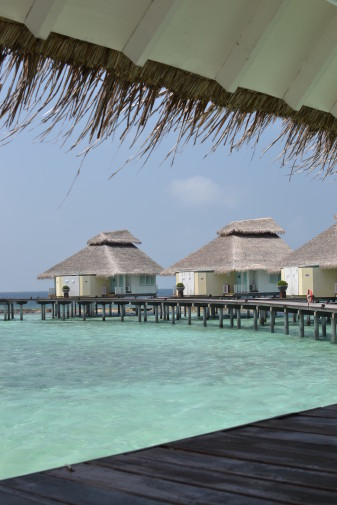 Maldive_28 dec_11
