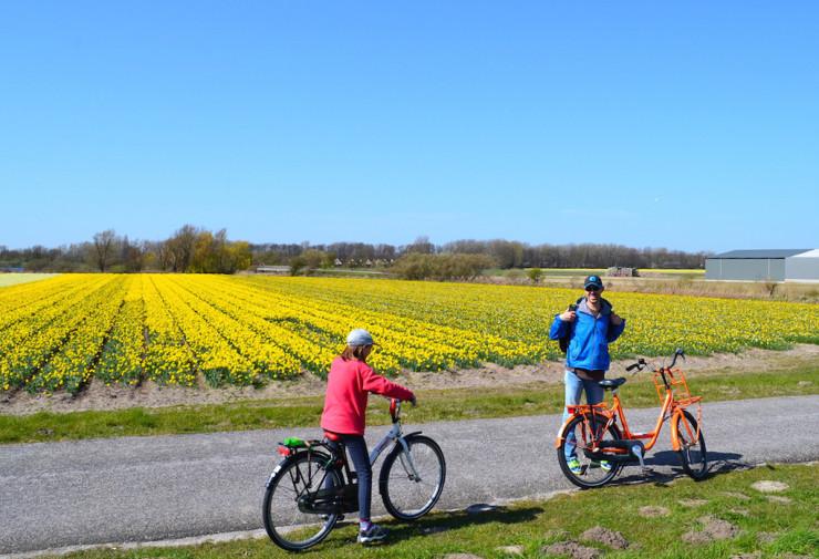 Olanda_bicicleta Keukenhof 10