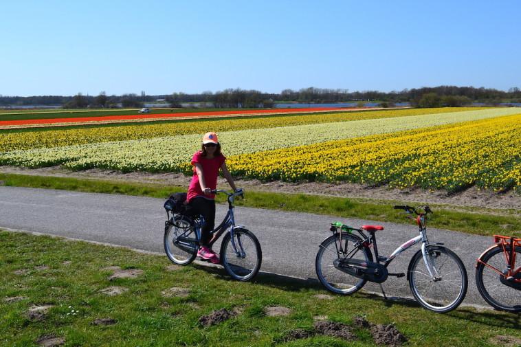 Olanda_bicicleta Keukenhof 11