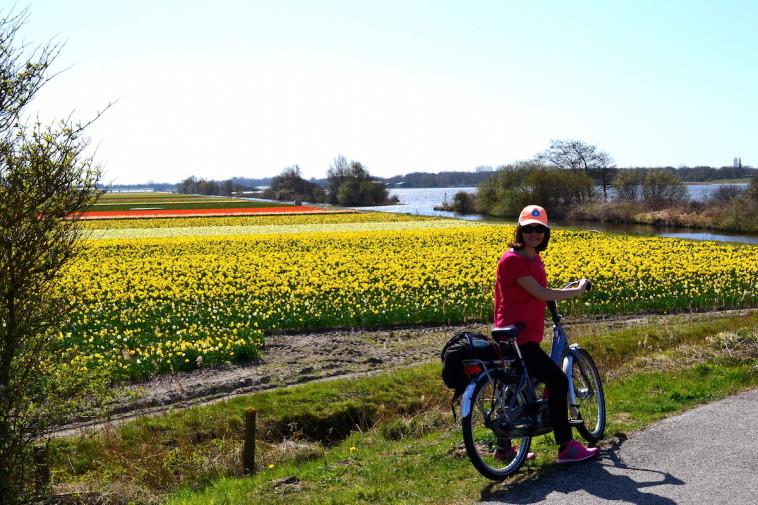 Olanda_bicicleta Keukenhof 16