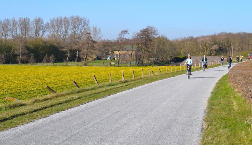 Olanda_bicicleta Keukenhof 38