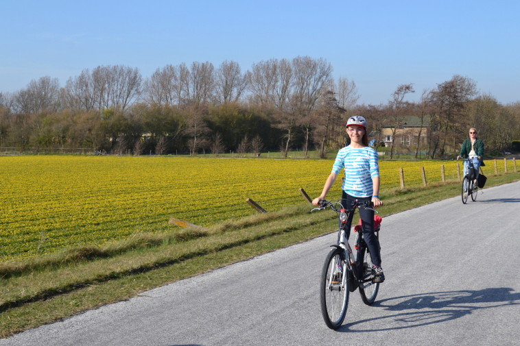 Olanda_bicicleta Keukenhof 39