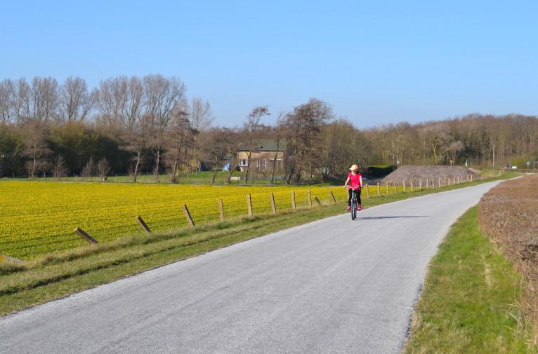 Olanda_bicicleta Keukenhof 40