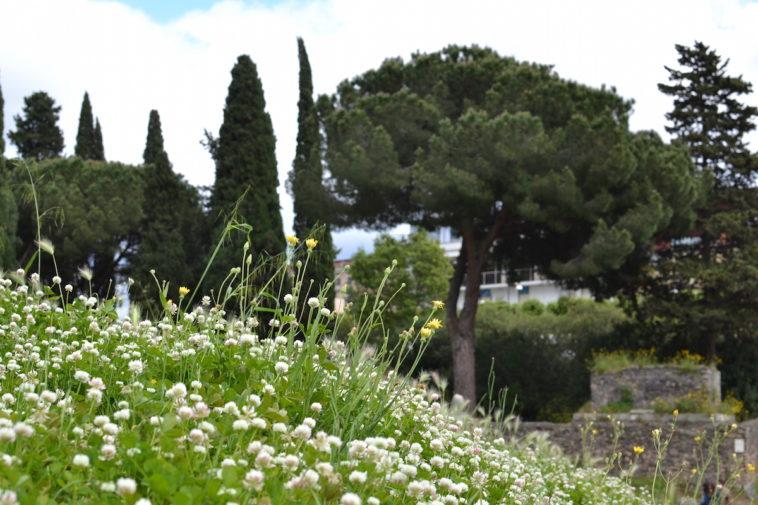 Pompei_25