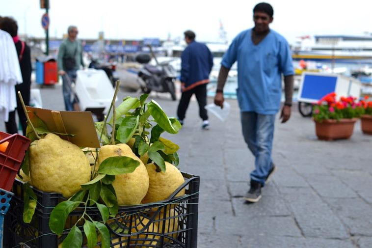 Italia_food_Capri lemons 2