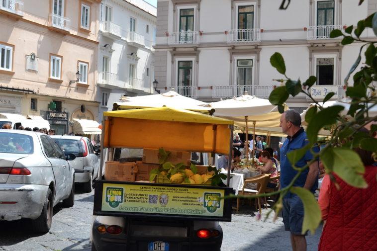 Italia_food_Capri lemons 3
