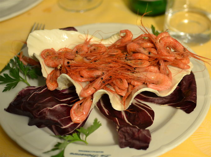 Italia_food_Massa Lubrense shrimps