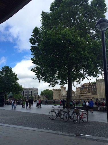 Londra 2016_Turnul Londrei