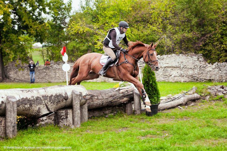 karpatia-horse-show-4