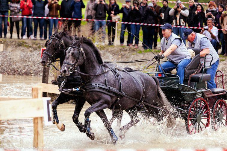 karpatia-horse-show-6