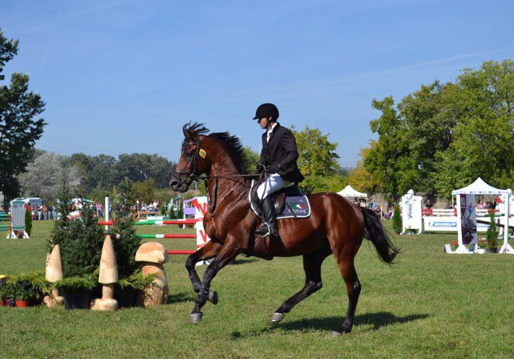karpatia-horse-show-2016-13