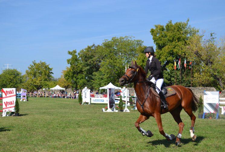 karpatia-horse-show-2016-16