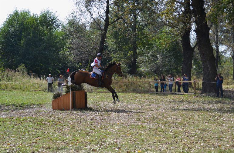 karpatia-horse-show-2016-2