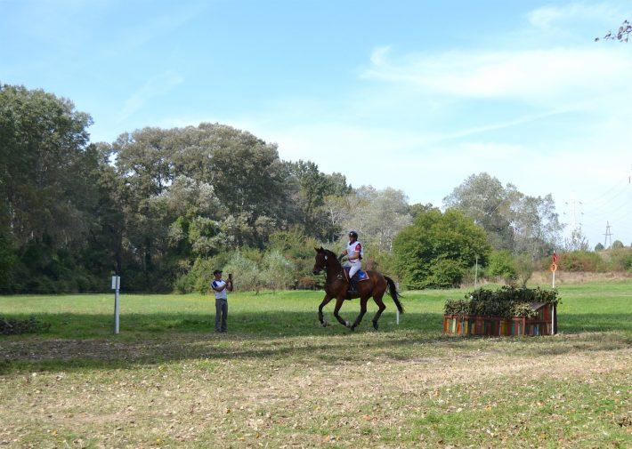 karpatia-horse-show-2016-3