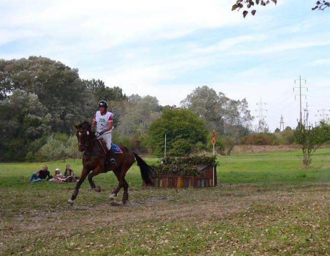karpatia-horse-show-2016-4