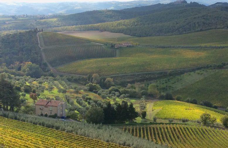 toscana_castello-din-brolio-19