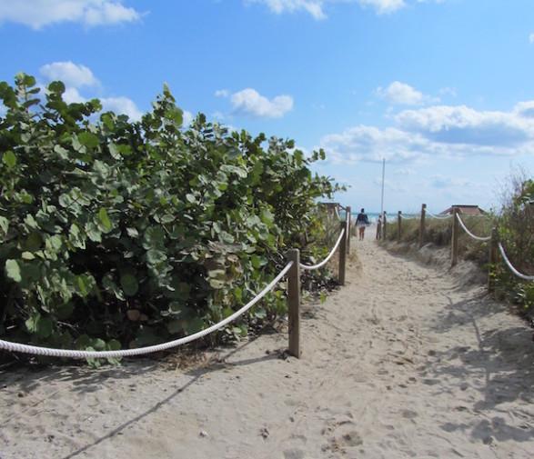 Miami Beach _plaja