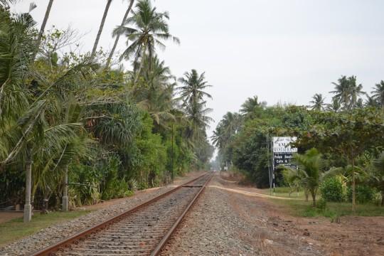 SL_tren Bentota